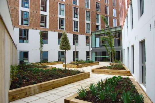 Davis Landscape Architects Ravenscout House London Student Accommodation Landscape Design Architect Complete Courtyard Space
