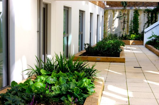 Davis Landscape Architecture Ravenscourt House London Student Accommodation Landscape Architect Courtyard 2 Space