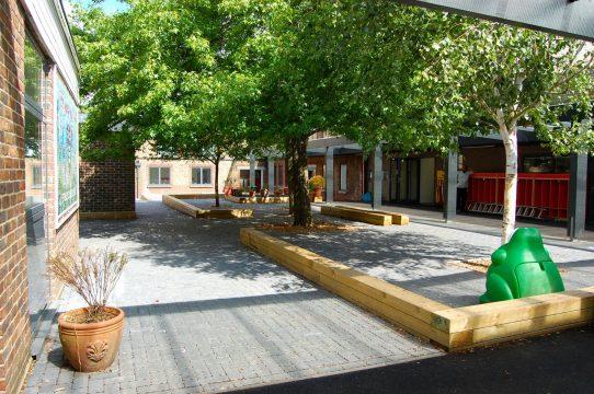 Davis Landscape Architecture Stanley Primary School London Landscape Complete Court Yard with Trees