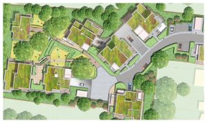 Davis Landscape Architecture 1 Tyson Road London Residential Landscape Rendered Masterplan Icon