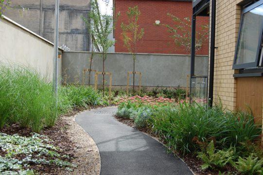 Davis Landscape Architecture Sarena House Silver Works Residential Landscape Architect Planting