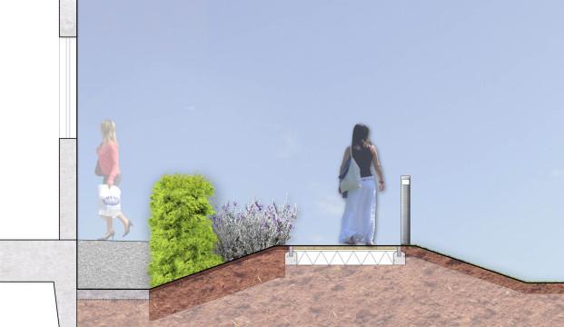 Davis Landscape Architecture MHT House Crescent Residential Landscape Architects Rendered Section Planning
