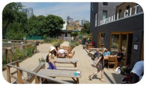 Davis Landscape Architecture Vauxhall City Farm Lambeth Public Space Landscape Architect Design Planning Tender Construction Complete Icon