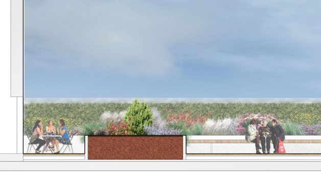 Davis Landscape Architecture Edgware Road Colindale London Render Section Residential Landscape Architect Design Planning Green Roof D