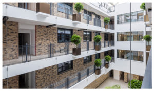 Davis-Landscape-Architecture-Carlow-House-Camden-London-Residential-Atrium-Landscape-Architect-Technical-Design-Pots-Complete-Icon