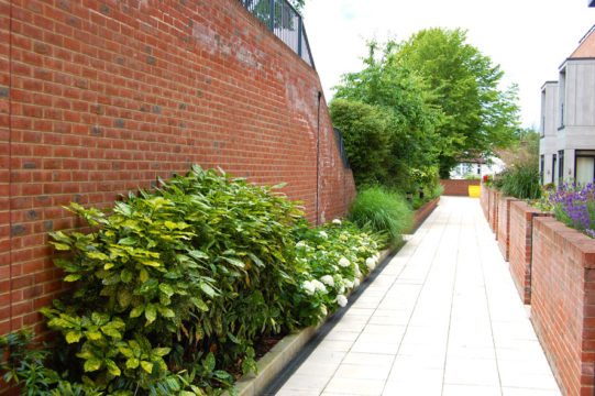 Davis Landscape Architecture Finchley Road Barnet London Residential Landscape Podium Deck Shared Footpath