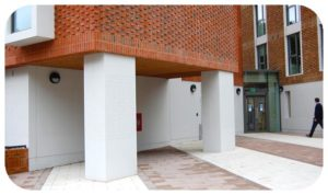 Davis Landscape Architecture Ravenscout House Hammersmith London Student Accommodation Landscape Complete Entrance Space Icon