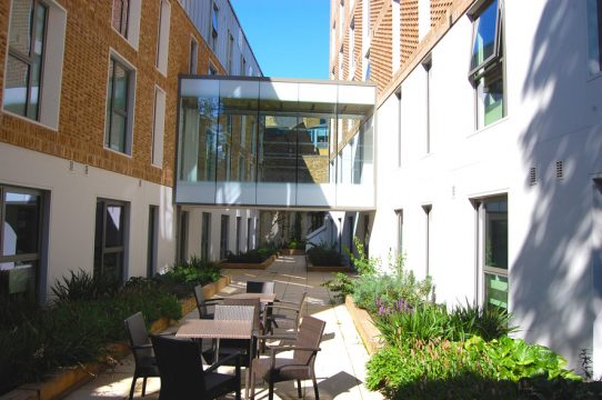 Davis Landscape Architecture Ravenscourt House London Student Accommodation Landscape Architect Courtyard
