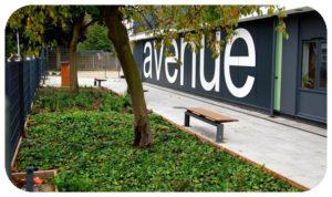 Davis Landscape Architecture Avenue Primary School London Landscape Complete Building Frontage Planting Icon