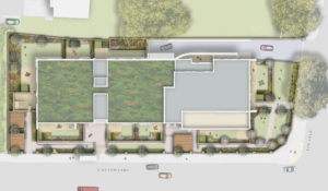 Davis Landscape Architecture Park Grove Acton London Residential Landscape Architect Design Rendered Plan