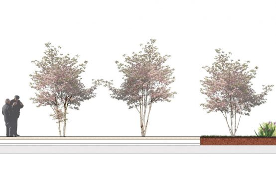 Davis Landscape Architecture Knowles House Brent London Residential Rendered Section 4b Landscape Design Detail Planning