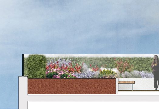 Davis Landscape Architecture Edgware Road Colindale London Render Section Residential Landscape Architect Design Planning Green Roof A