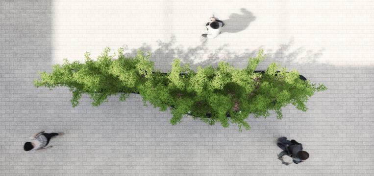 Davis Landscape Architecture Carlow House Camden London Residential Atrium Landscape Architect Technical Design Planter Render