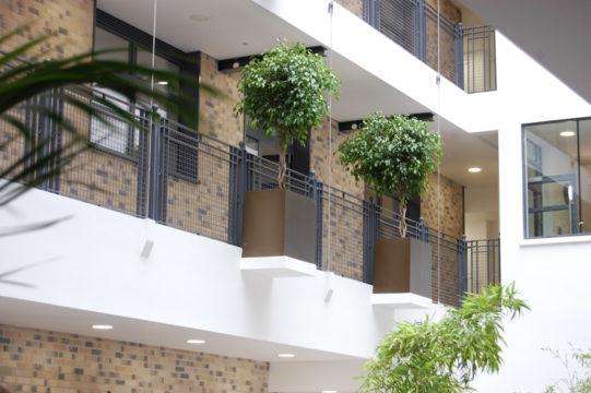 Davis Landscape Architecture Carlow House Camden London Residential Atrium Landscape Architect Technical Design Pots Detail Complete
