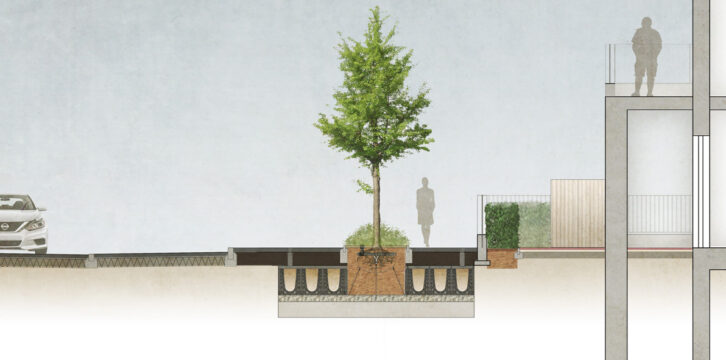 Davis Landscape Architecture Coral London Road Romford Havering London Residential Landscape Architect Tree Planting Rendered Section Planning